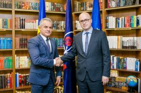 Vlad Plahotniuc discussed with Romanian politicians their support for the European path of the Republic of Moldova